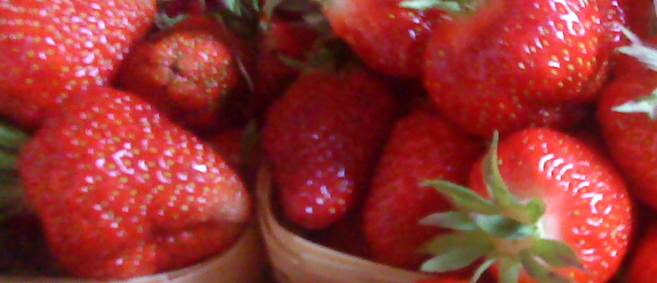 Strawberries-for-website